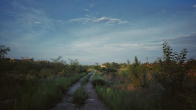 path-867224_640